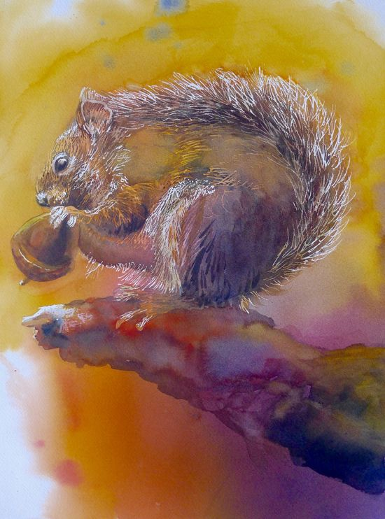 June 30 - Painting Fur and Feathers with Suzanne Hetzel
