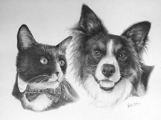 Sept 28 - Drawing Realistic Animals with Gaella Materne