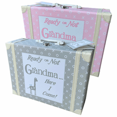 Pink or Grey Child to Cherish Visit Grandma Kid's Suitcase
