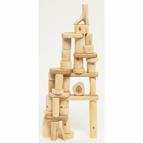 Wooden Tree Blocks Barkless 36 Piece Real Wood Building Blocks in a Bag