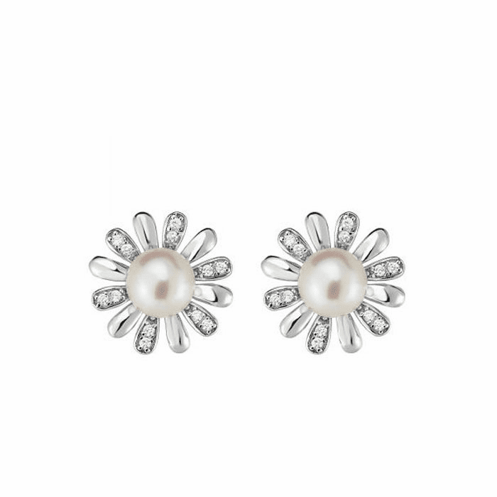 Silver Rhodium Finish Fancy Earring - AGER6589