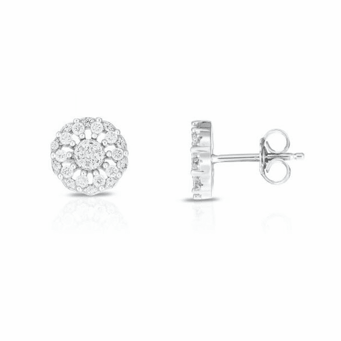 Silver with Rhodium Finish Earring with Push Back Clasp - AGER8176