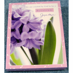 Encouragement-Joyce Meyer - 12 Boxed Notes & Folio