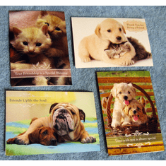 Forever Friends-Friendship Greeting Cards