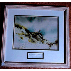 Skywatcher--Framed Picture