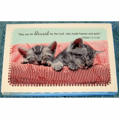 Sleeping Kittens - Whiskers & Paws - Premium Note Folio