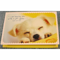 Sleeping Puppy--Premium Inspirational Notes