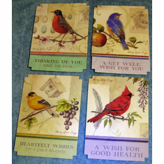 Song Birds - Get Well Premium- 12 Diecut Greeting Cards