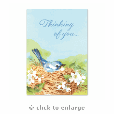 Thinking of You – 2 Packs Of 10 Note Cards