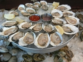 East Coast Oyster Sampler!