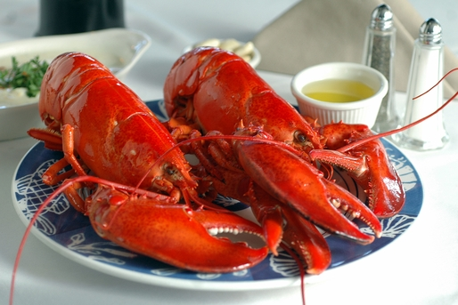 ON SALE! Two packs of Live Maine Lobsters!