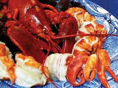 One pound Premium Maine Lobster Meat