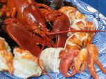 Premium Maine Lobster Meat!