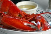 Upgrade Your Lobster Size! (Per Lobster)
