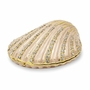 Bejeweled Clam Shell Keepsake Box