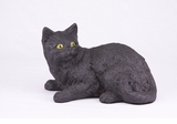 Black Shorthair Cat Hollow Figurine Pet Cremation Urn - 2700