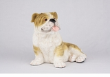 Brindle White Bulldog Hollow Figurine Pet Cremation Urn - 2724