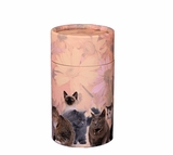Cat Lovers Eco Friendly Cremation Urn Scattering Tube