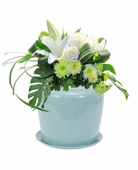 Celadon Blue Plant System Cremation Urn For Flowers Or Plants