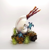 Pearled Nautilus and Turtles Over Burl Cremains Encased in Glass Cremation Sculpture