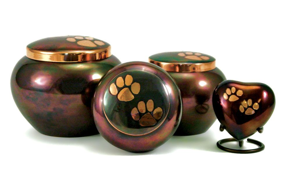 Odysey Rainbow Medium Cremation Pet Urn