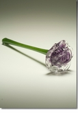 Purple Eternal Bloom Cremains Encased in Glass Cremation Long Stem Rose