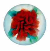 Red Rose Cremains Encased in Glass Cremation Paperweight