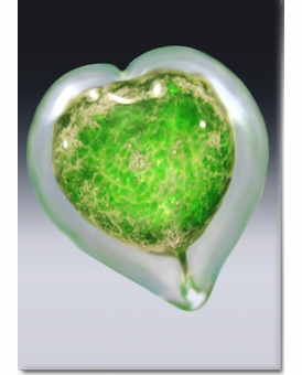 Small Green Boundless Heart Cremains Encased in Glass Keepsake Cremation Urn