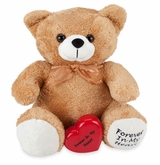 Tan Huggable Memory Teddy Bear Cremation Urn
