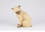 Tan Siamese Cat Hollow Figurine Pet Cremation Urn - 2710