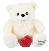 White Huggable Memory Teddy Bear Cremation Urn