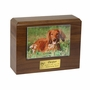 X-Large  Photo Walnut Wood Pet Cremation Urn