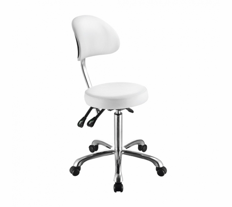 Lolli SB - Rolling Stool with Back Support 1025B - out of stock