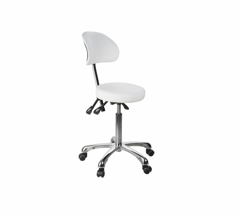 Rolling Stool with Back Support (3 motion) - Silver Fox 1025B