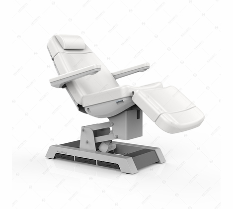 Silver Fox - Facial Bed and Exam Chair - 2220B