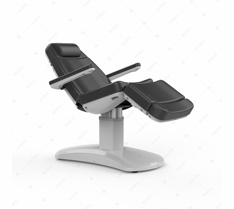 Silver Fox - Facial Bed and Exam Chair - Dark Gray 2222B