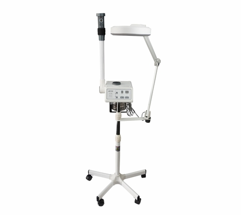 Spa Luxe 2 in 1 Digital Facial Steamer and Magnifying Lamp Combo (SL-300A & 1001T)