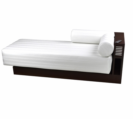 Touch America - Masquerade Daybed + Massage Table (Free Shipping)