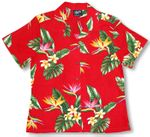 Bird of Paradise Display Womens Shirt