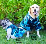 Night Time Surf Shirt for Dogs