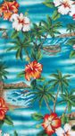 Hibiscus Outrigger Island Shorts