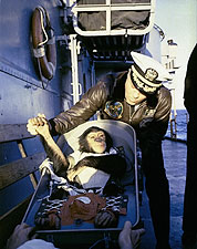 1st American Astronaut Ham the Chimp Photo Print for Sale