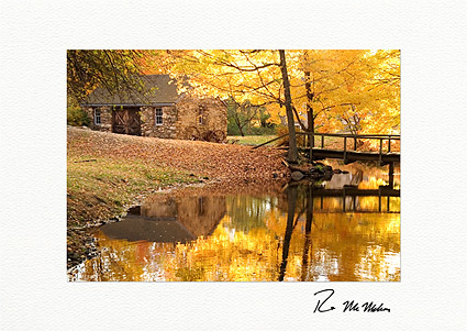 Autumn Reflections Individual Thanksgiving Cards