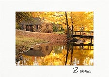 Autumn Reflections Personalized Thanksgiving Cards