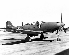 Bell P-39 Airacobra 363rd Fighter Squadron Photo Print