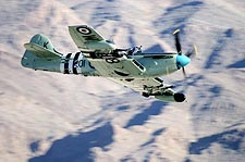 British WWII Fairey Firefly Aircraft Photo Print for Sale