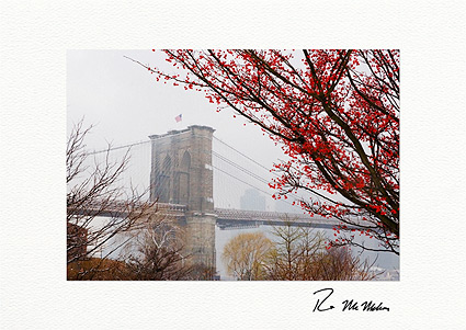 Brooklyn Bridge Winter Berries NYC Personalized Christmas Cards