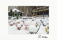 Bryant Park Snow Covered Chairs NYC Personalized Christmas Cards