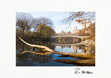 Central Park Bow Bridge Autumn Individual Greeting Cards