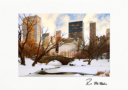 Central Park Bridge Winter New York City Individual Christmas Cards